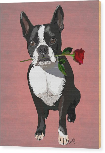 Boston Terrier With A Rose In Mouth Wood Print by Kelly McLaughlan