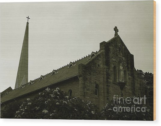 Botanical Gardens Cathedral Wood Print by Cheryl Boutwell