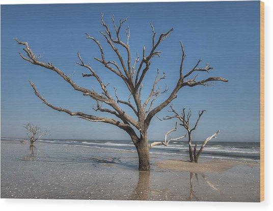 Botany Bay And Edisto Beach Wood Print