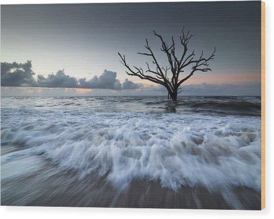 Botany Bay Power Wood Print