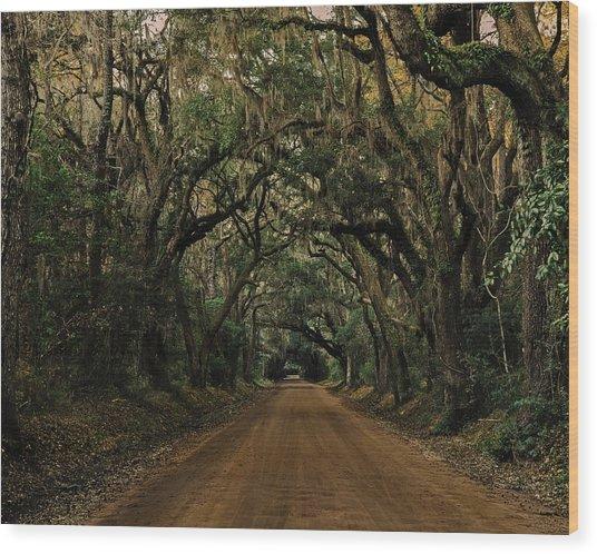 Botany Bay Road Wood Print