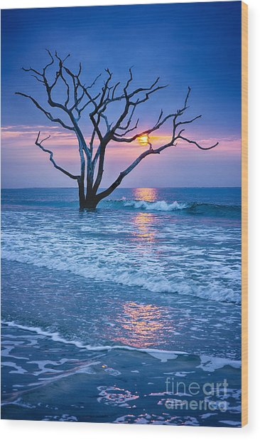 Botany Bay Sunrise 2 Wood Print