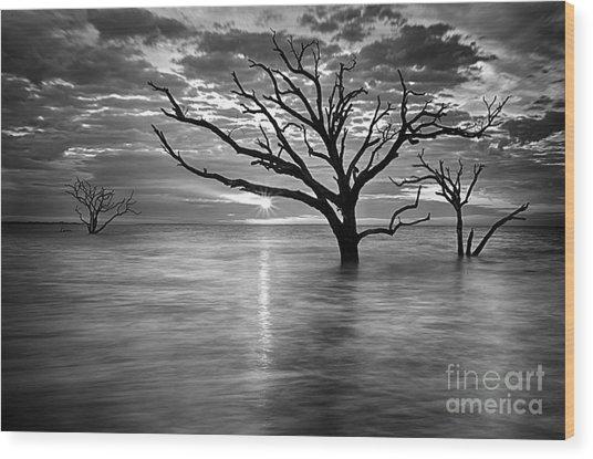 Botany Bay Sunrise 6 Black And White Wood Print