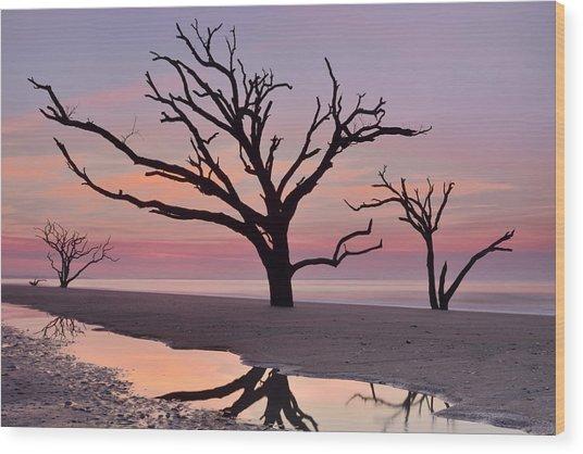Botany Bay Trees Wood Print