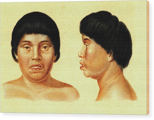 Botocudo Woman Wood Print