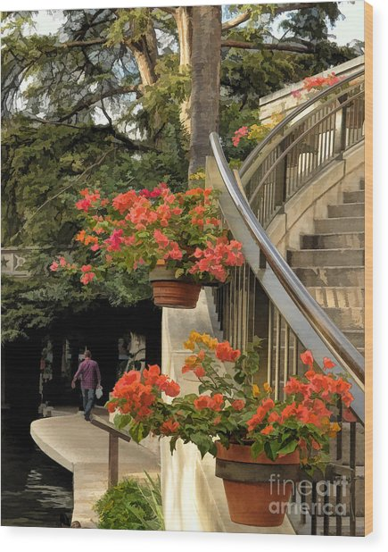 Bougainvilla On Riverwalk Wood Print