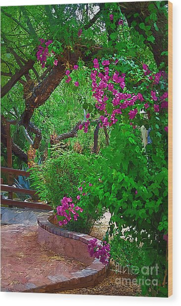 Bougainvillea In The Courtyard Wood Print