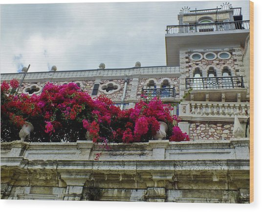 Bougainvillea On Balcony In Lisbon  Wood Print