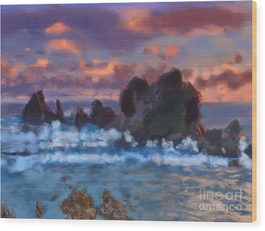 Boulder Coastal Beach Wood Print