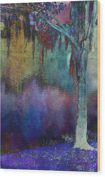Bouyant Reflections Wood Print by Jan Amiss Photography