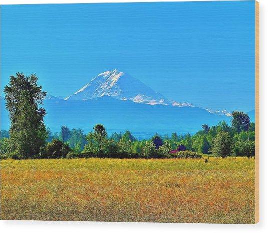 Bovine View Of Mt. Rainier Wood Print