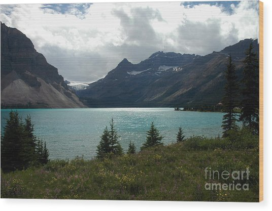1021a Bow Lake Alberta Wood Print