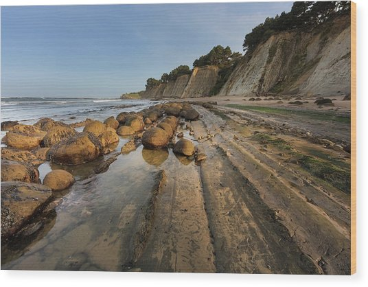 Bowling Ball Beach Near Point Arena Wood Print by Chuck Haney