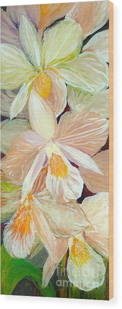 Boxed Orchids Detail Wood Print
