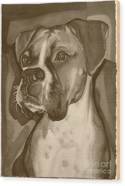 Boxer Dog Sepia Print Wood Print