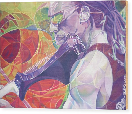 Boyd Tinsley And Circles Wood Print