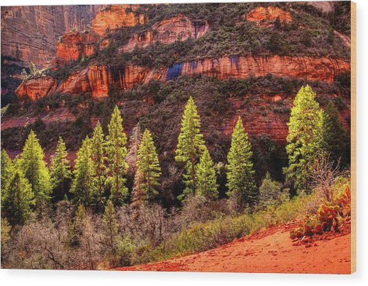 Boynton Canyon Wood Print