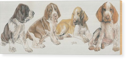 Bracco Italiano Puppies Wood Print