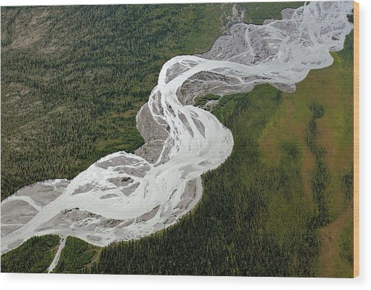 Braided River Wood Print by Dr Juerg Alean/science Photo Library