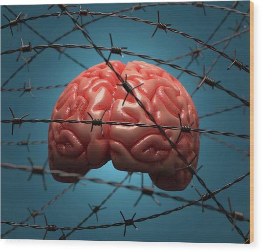 Brain And Barbed Wire Wood Print by Ktsdesign