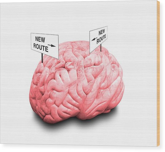Brain Plasticity Wood Print by Victor De Schwanberg/science Photo Library
