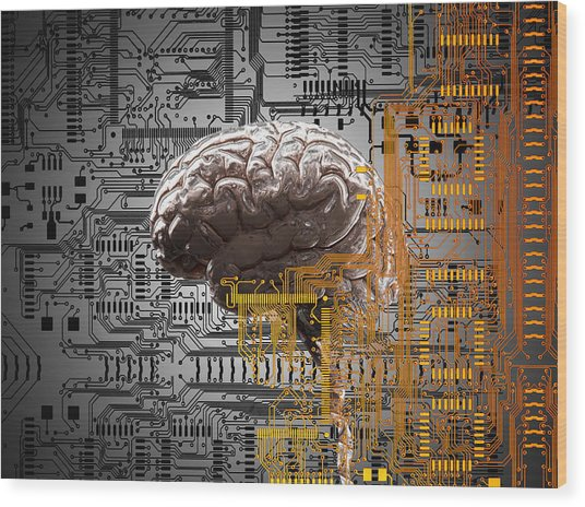 Brain Under Layers Of Circuit Board,  Wood Print by John M Lund Photography Inc