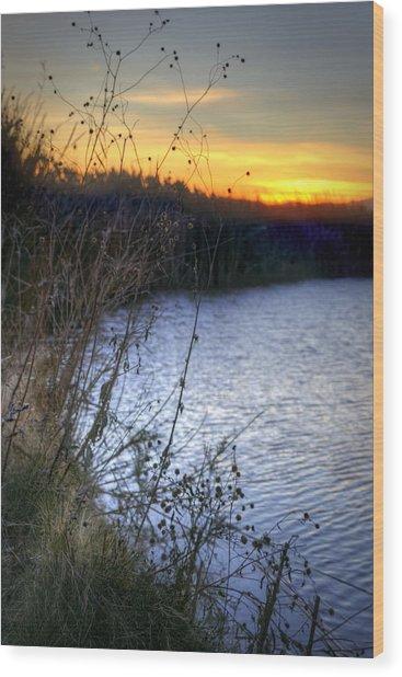 Bramble Pond Wood Print