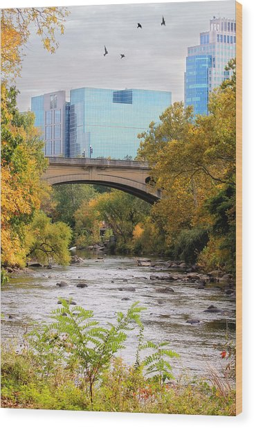Brandywine Creek Wood Print