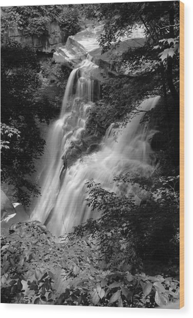 Brandywine Falls Black And White Wood Print