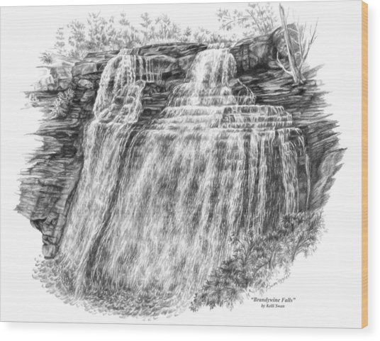 Brandywine Falls - Cuyahoga Valley National Park Wood Print