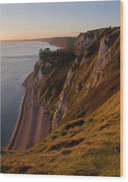 Branscombe Cliffs In Devon Wood Print