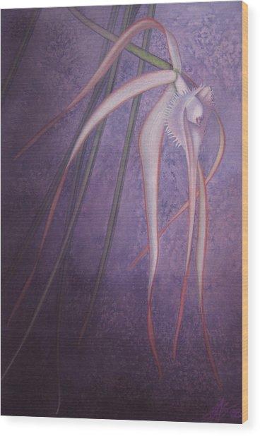 Brassavola Cucullata Wood Print