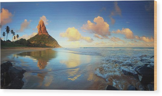 Brazil, Fernando De Noronha Island Wood Print by Michele Falzone