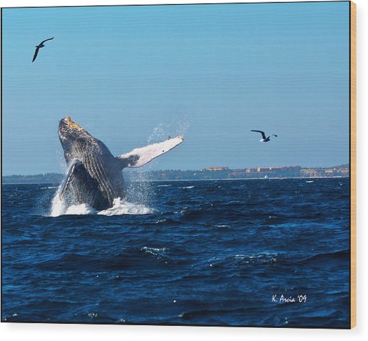 Breaching Whale Wood Print
