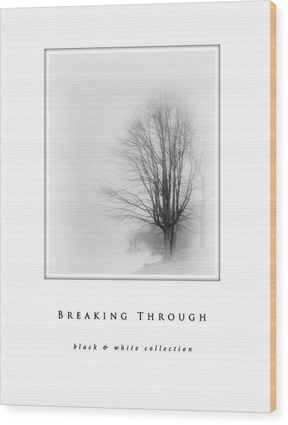 Breaking Through  Black And White Collection Wood Print