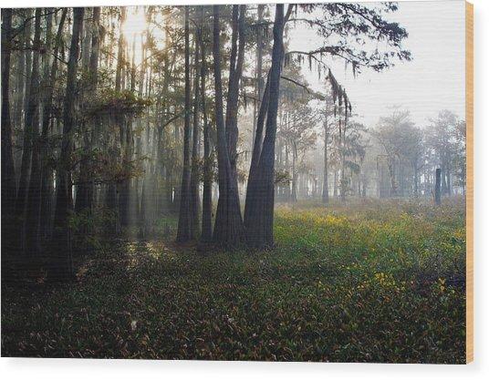 Breaking Through Morning Fog Wood Print