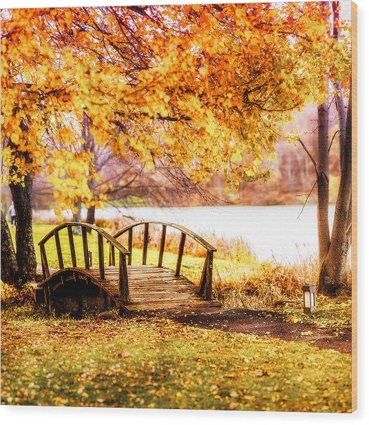 Brenzier Bridge Wood Print