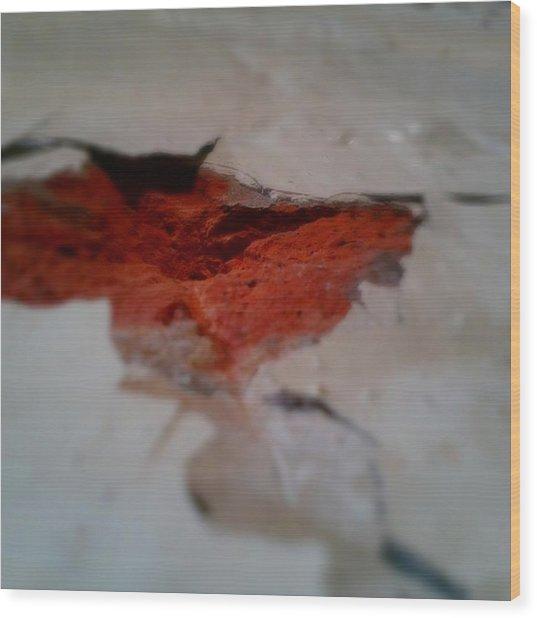 Brick Revisited Wood Print by Jaime Neo