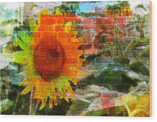 Bricks And Sunflowers Wood Print