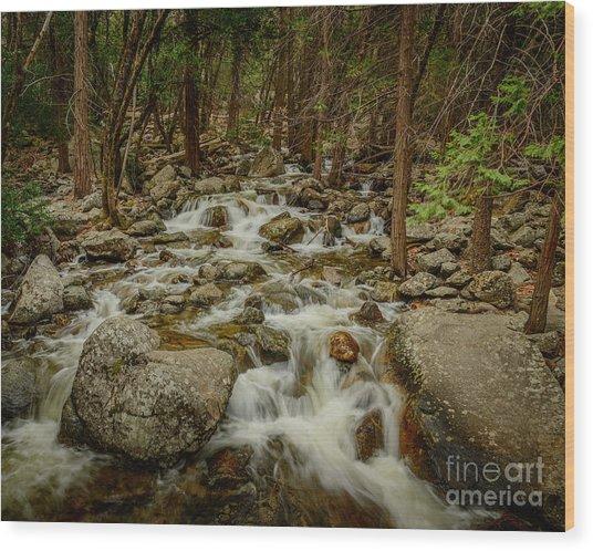 Bridalveil Creek In Yosemite Wood Print