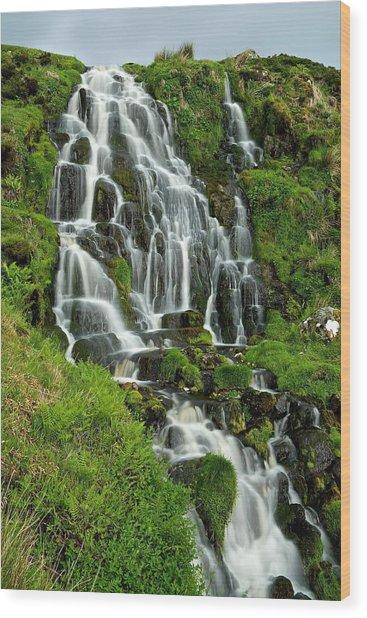 Bride's Veil Waterfall Wood Print