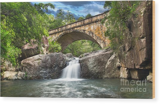 Bridge Falls Wood Print by Shannon Rogers