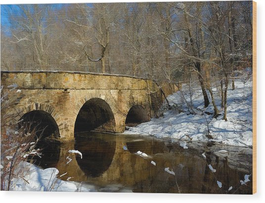 Bridge In Woods Wood Print