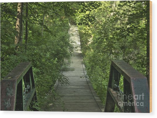 Bridge Into The Woods Wood Print