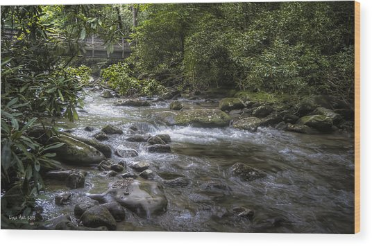 Bridge Over Running Water Wood Print