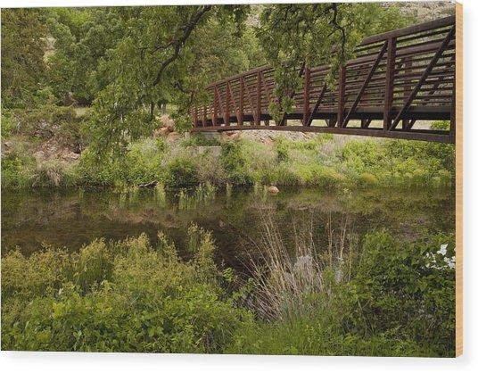 Bridge Over Wetlands Wood Print