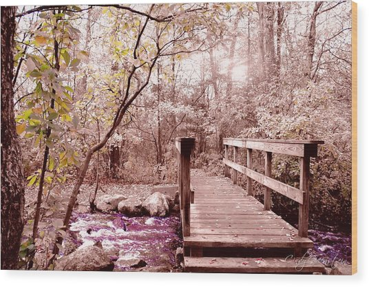 Bridge To Utopia  Wood Print