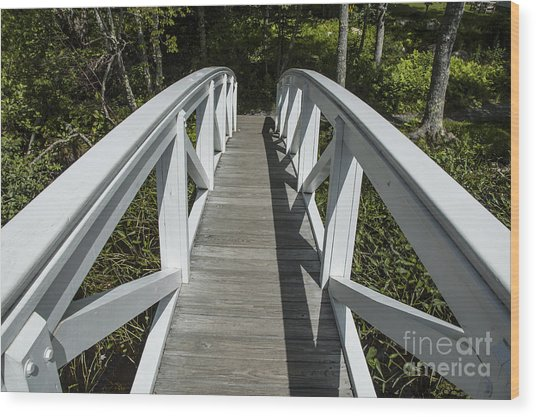 Bridge To Woods Wood Print