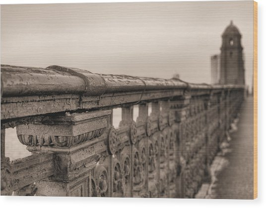 Bridging The Charles Bw Wood Print