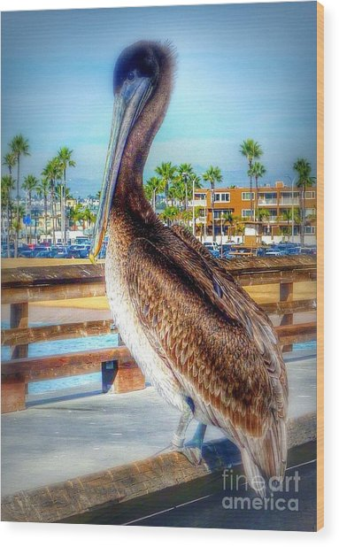 Brief Pelican Encounter  Wood Print